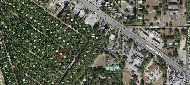 2409 Shepard Street, Inverness, FL 34452 (MLS #795844) :: Plantation Realty Inc.