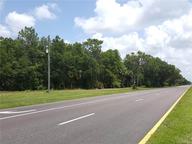 9651 N Suncoast Boulevard, Crystal River, FL 34428 (MLS #795869) :: Plantation Realty Inc.