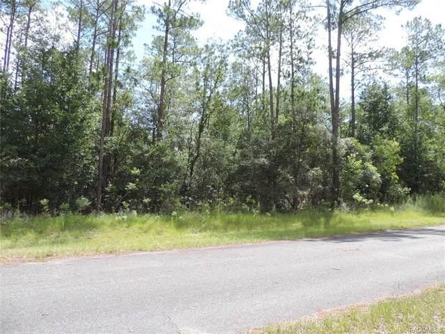 10139 N Conrad Point, Citrus Springs, FL 34434 (MLS #795907) :: Plantation Realty Inc.