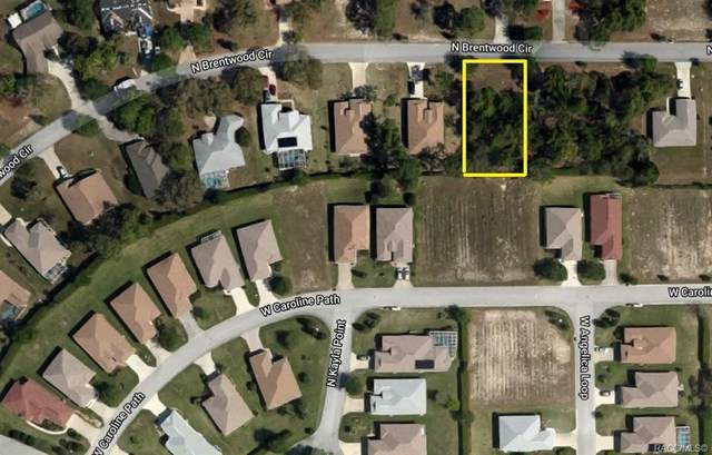 2477 N Brentwood Circle, Lecanto, FL 34461 (MLS #795922) :: Plantation Realty Inc.