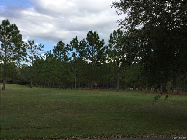 2606 N Brentwood Circle, Lecanto, FL 34461 (MLS #795982) :: Plantation Realty Inc.