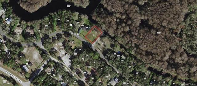 3979 E Riverside Drive, Dunnellon, FL 34434 (MLS #796023) :: Plantation Realty Inc.