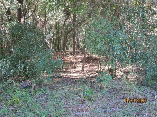 1779 N Mooneys Point, Hernando, FL 34442 (MLS #796025) :: Plantation Realty Inc.
