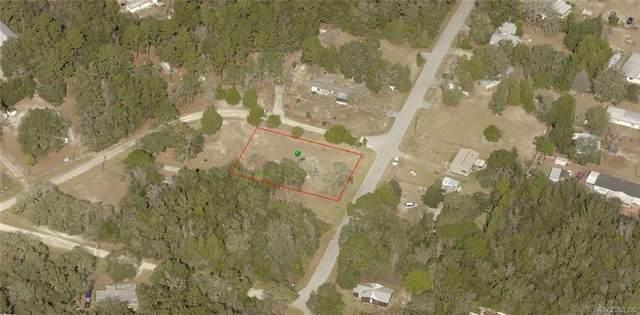 6795 N Bent Way, Hernando, FL 34442 (MLS #796065) :: Plantation Realty Inc.