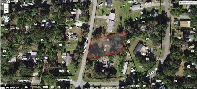 2845 N Lakefront Drive, Hernando, FL 34442 (MLS #796097) :: Plantation Realty Inc.