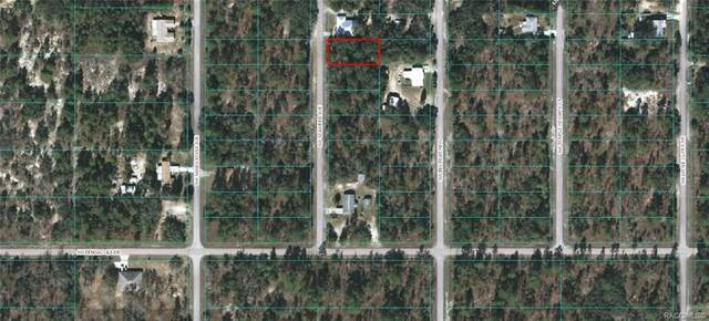 Lot 36 SW Seaweed Avenue, Dunnellon, FL 34431 (MLS #796105) :: Plantation Realty Inc.