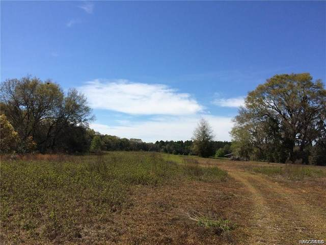 0 SW 36th Street, Dunnellon, FL 34431 (MLS #796153) :: Plantation Realty Inc.