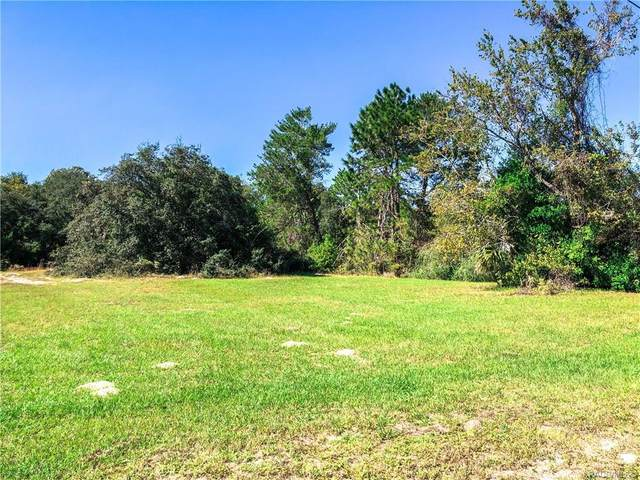 3164 N Clements Avenue, Hernando, FL 34442 (MLS #796154) :: Plantation Realty Inc.