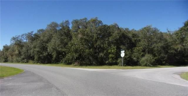 0 Sw 36th Ave. Road, Ocala, FL 34473 (MLS #796168) :: Plantation Realty Inc.