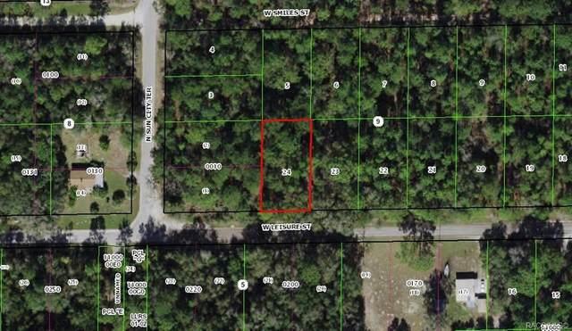 7335 W Leisure Street, Dunnellon, FL 34433 (MLS #796204) :: Plantation Realty Inc.