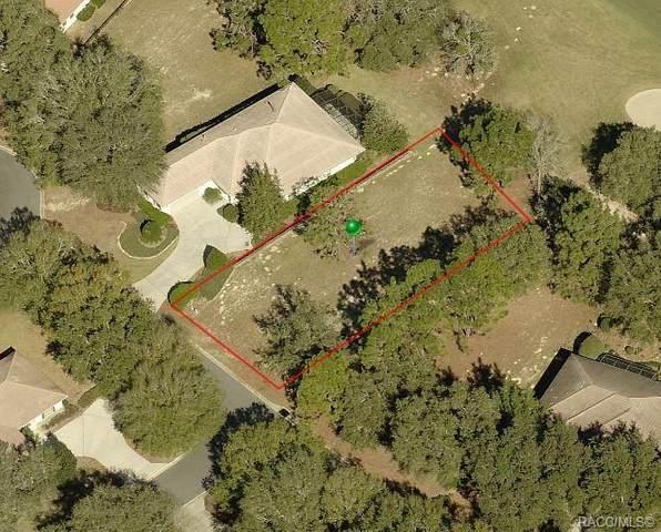 3641 W Treyburn Path, Lecanto, FL 34461 (MLS #796292) :: Plantation Realty Inc.