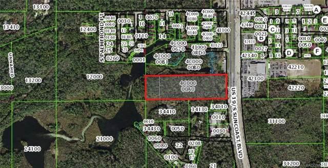 2450 S Suncoast Boulevard, Homosassa, FL 34448 (MLS #796328) :: Plantation Realty Inc.