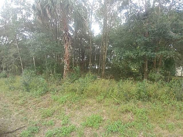 8658 W Basilico Street, Crystal River, FL 34428 (MLS #796352) :: Plantation Realty Inc.