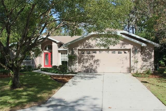 21 Plum Court, Homosassa, FL 34446 (MLS #796488) :: Plantation Realty Inc.