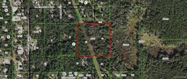 2221 E Maryann Lane, Hernando, FL 34442 (MLS #796499) :: Plantation Realty Inc.