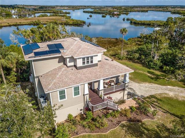 14211 W St. Martins Road, Crystal River, FL 34429 (MLS #796546) :: Plantation Realty Inc.