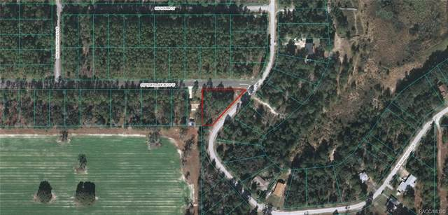 Lot 9 SW Shorewood Drive, Dunnellon, FL 34431 (MLS #796550) :: Plantation Realty Inc.