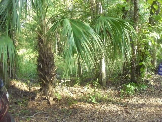 0 Pamela Drive, Yankeetown, FL 34498 (MLS #796560) :: Plantation Realty Inc.