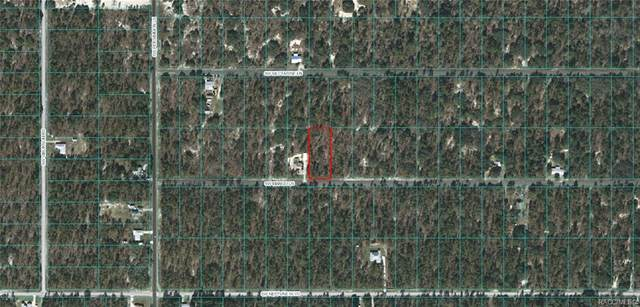 Lot 32 SW Mango Lane, Dunnellon, FL 34431 (MLS #796561) :: Pristine Properties