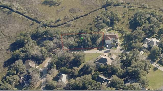 4655 S Gator Loop, Homosassa, FL 34448 (MLS #796588) :: Plantation Realty Inc.