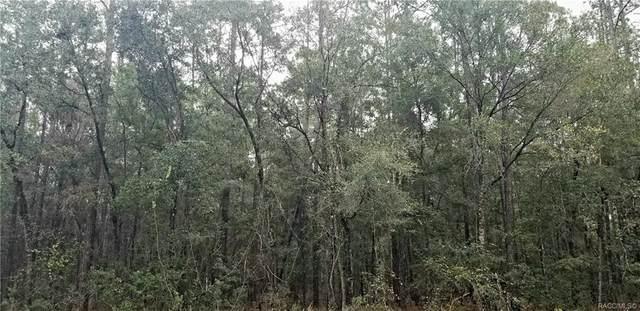 8899 N Sawyer Terrace, Citrus Springs, FL 34434 (MLS #796759) :: Pristine Properties