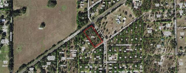 6159 W Pell Place, Dunnellon, FL 34433 (MLS #796795) :: Plantation Realty Inc.