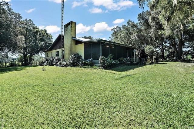 6350 NE 86th Avenue, Bronson, FL 32621 (MLS #796816) :: Plantation Realty Inc.