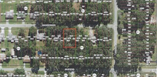 3871 E Allendale Street, Inverness, FL 34453 (MLS #796827) :: Plantation Realty Inc.