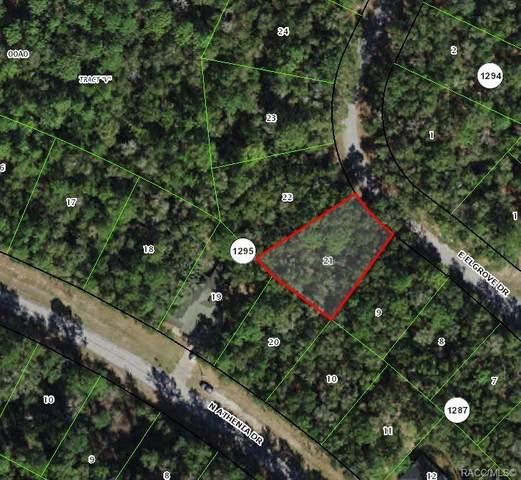 450 E Elgrove Drive, Citrus Springs, FL 34434 (MLS #796834) :: Plantation Realty Inc.