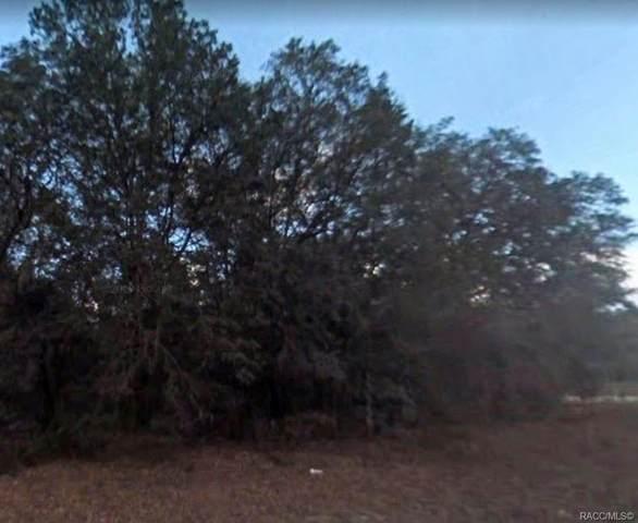 1197 E Odin Drive, Citrus Springs, FL 34434 (MLS #796842) :: Plantation Realty Inc.