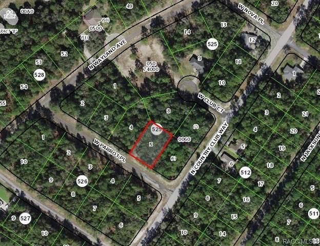 513 E Abend Drive, Citrus Springs, FL 34434 (MLS #796845) :: Plantation Realty Inc.