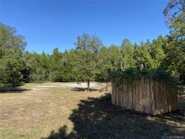 4821 E Withlacoochee Trail, Dunnellon, FL 34434 (MLS #796850) :: Plantation Realty Inc.