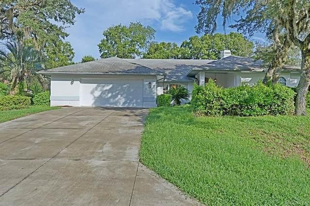 18 Linder Drive, Homosassa, FL 34446 (MLS #796862) :: Plantation Realty Inc.