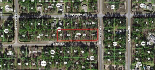 958 W Cary Drive, Citrus Springs, FL 34433 (MLS #796864) :: Plantation Realty Inc.