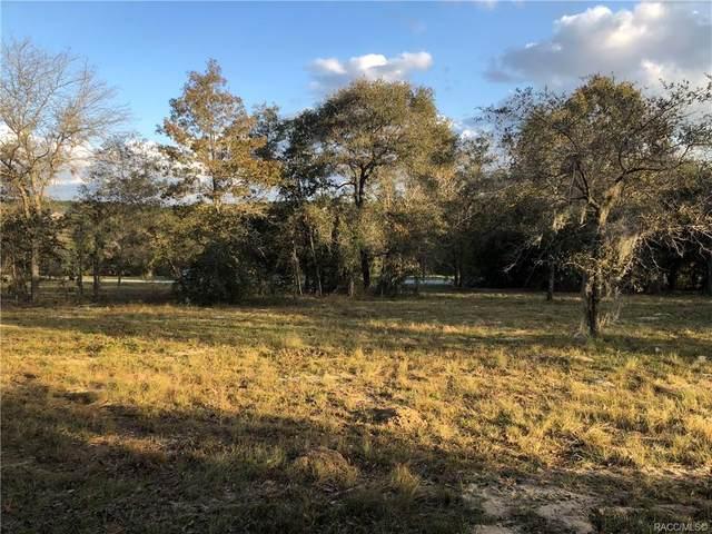 614 N Lake Shenandoah Loop, Inverness, FL 34453 (MLS #796891) :: Plantation Realty Inc.