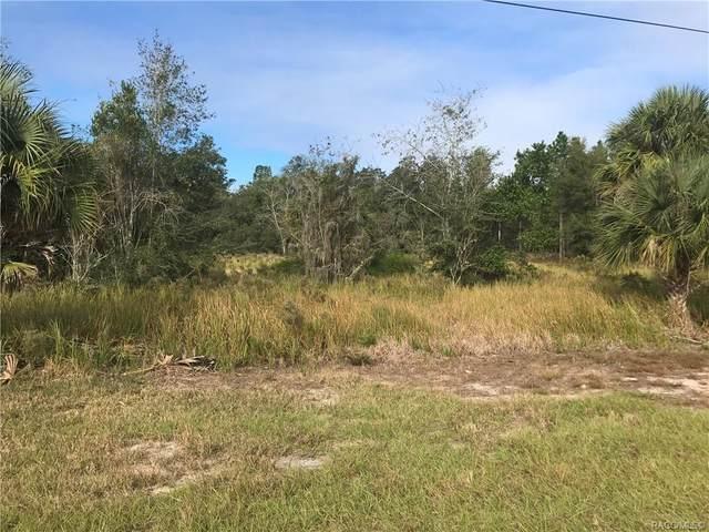 11360 S Florida Avenue, Floral City, FL 34436 (MLS #796898) :: Plantation Realty Inc.