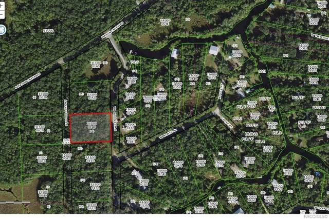 6252 S Westview Drive, Homosassa, FL 34448 (MLS #796899) :: Plantation Realty Inc.