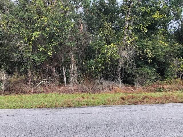 1443 E Bismark Street, Hernando, FL 34442 (MLS #796908) :: Plantation Realty Inc.