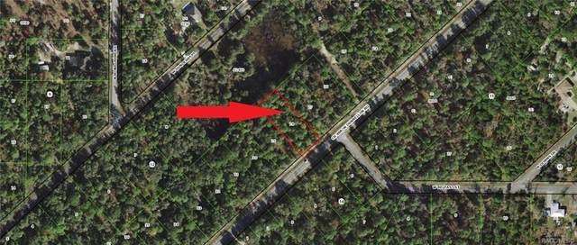 10659 W Dunnellon Road, Crystal River, FL 34428 (MLS #796945) :: Plantation Realty Inc.