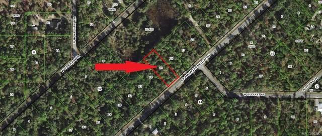 10673 W Dunnellon Road, Crystal River, FL 34428 (MLS #796946) :: Plantation Realty Inc.