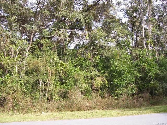883 W Keller Street, Hernando, FL 34442 (MLS #796977) :: Plantation Realty Inc.