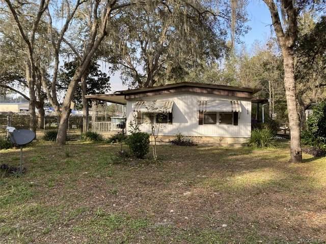 6615 N Iris Drive, Hernando, FL 34442 (MLS #797006) :: Plantation Realty Inc.