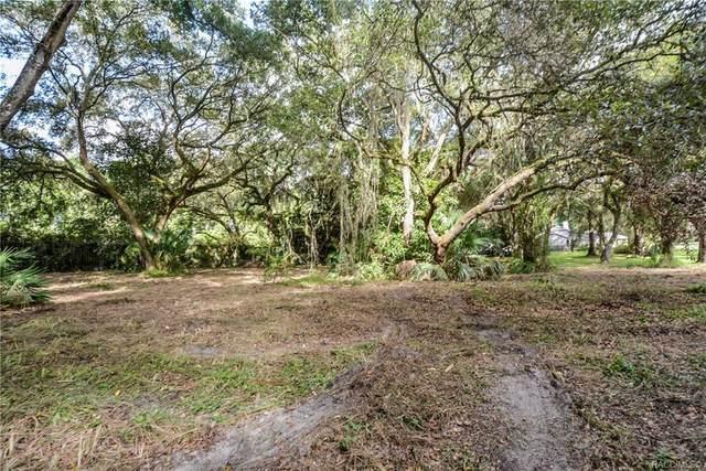 8255 E Fairway Loop, Inverness, FL 34450 (MLS #797010) :: Plantation Realty Inc.