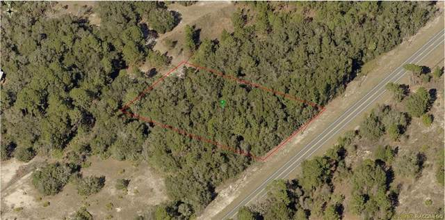 7978 N Carl G Rose Highway, Hernando, FL 34442 (MLS #797055) :: Plantation Realty Inc.