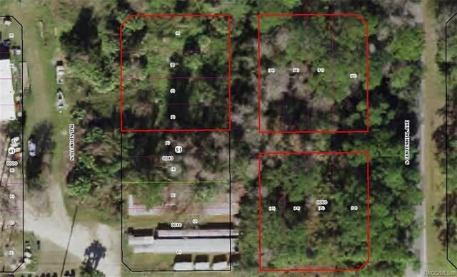 3953 S Illinois Terrace, Homosassa, FL 34448 (MLS #797099) :: Plantation Realty Inc.