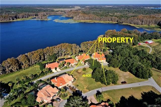 210 Buena Vista Court, Inverness, FL 34450 (MLS #797128) :: Plantation Realty Inc.