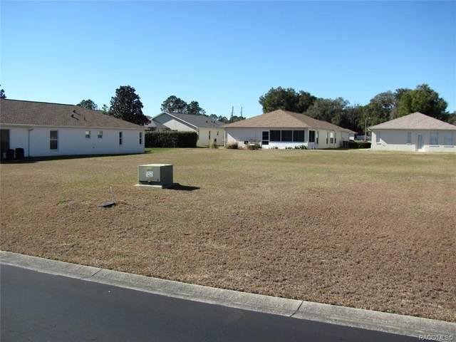 4494 N Webster Island Terrace, Hernando, FL 34442 (MLS #797197) :: Plantation Realty Inc.