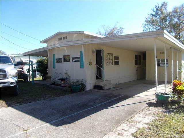 10224 E Pike Drive, Inverness, FL 34450 (MLS #797242) :: Plantation Realty Inc.