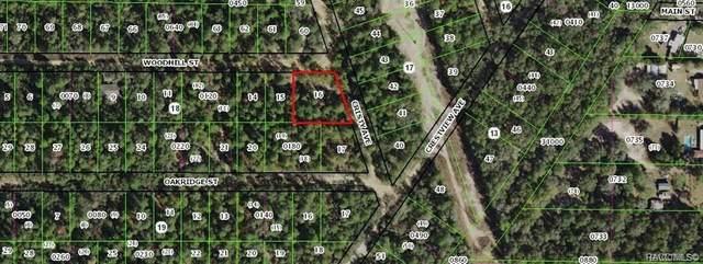 2701 Woodhill Street, Inverness, FL 34453 (MLS #797317) :: Plantation Realty Inc.