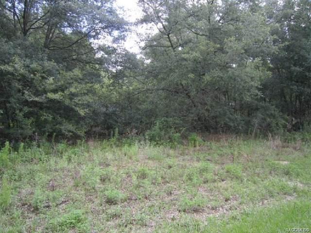 4053 E Grant Street, Inverness, FL 34453 (MLS #797318) :: Plantation Realty Inc.